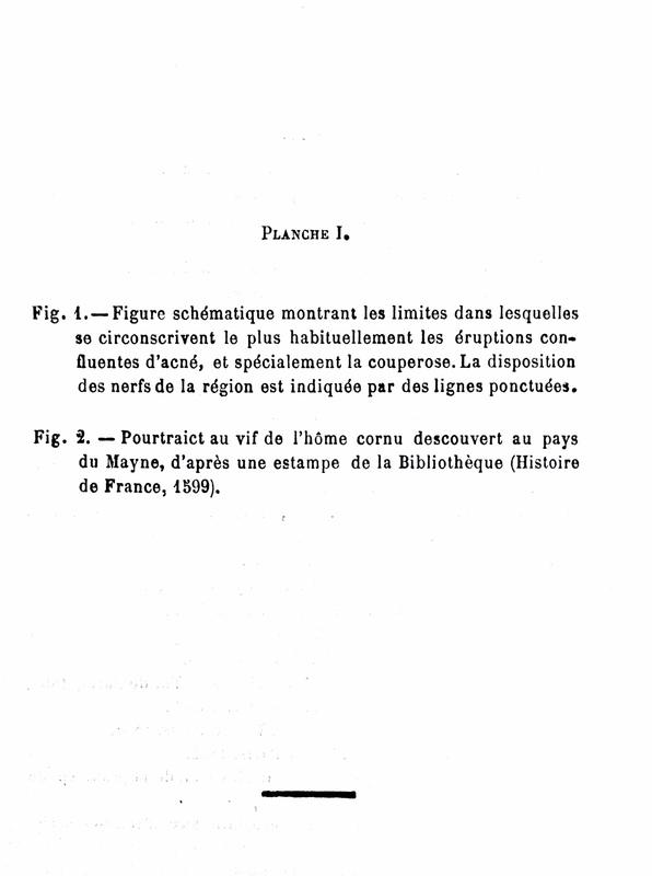 Misset Page 2.jpg