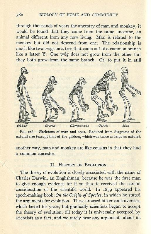 http://www2.lib.unc.edu/ncc/evolution/images/biologyofhome580.jpg