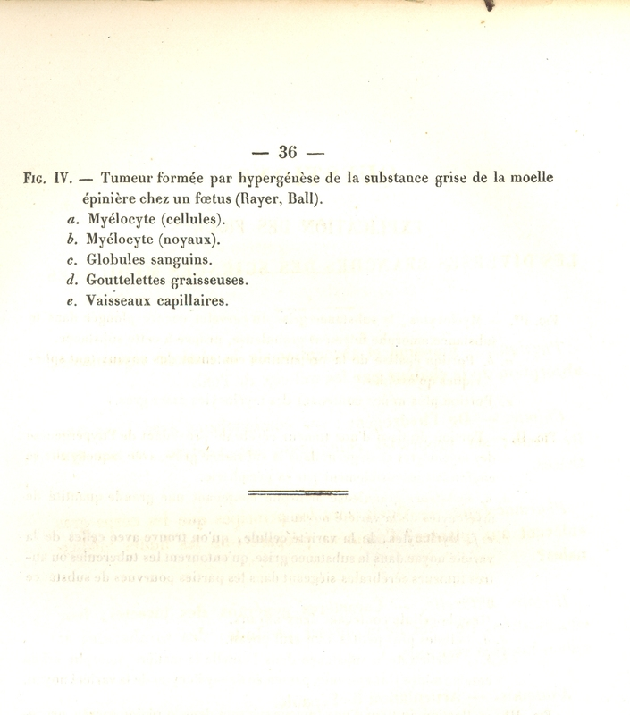 Osorio_3.jpg