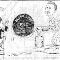 http://www2.lib.unc.edu/ncc/1898/sources/cartoons/images/1016.jpg