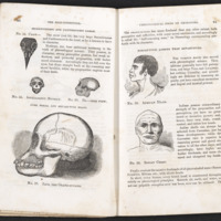 The Illustrated Self-instructor in Phrenology and Physiology by O. S. Fowler and L.N. Fowler