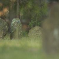 gravestones.jpg