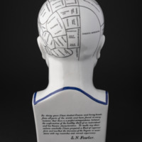 Photograph of a replicaof the ceramic phrenology busts made by the Fowler brothers