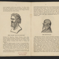 "Pages 6 and 7 of The Adamic Race: A Reply to ""Ariel"" by S.M. with illustrations showing ""The Adamic Race"" and ""The Mongolian"" race"