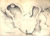 Rescherches sur les cas d'utérus double